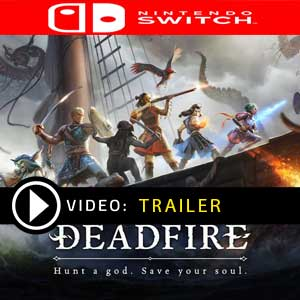 Acquistare Pillars of Eternity 2 Deadfire Nintendo Switch Confrontare i prezzi