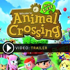 Acquista Codice Download Animal Crossing New Leaf Nintendo 3DS Confronta Prezzi