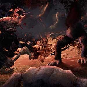 Campi di battaglia imbevuti di sangue