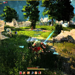 Black Desert Online Screenshot