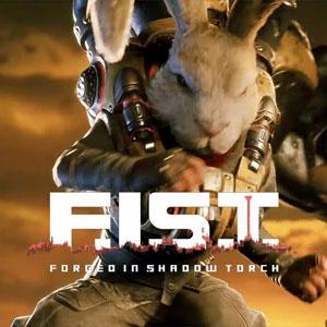 Acquistare F.I.S.T. Forged In Shadow Torch PS4 Confrontare Prezzi