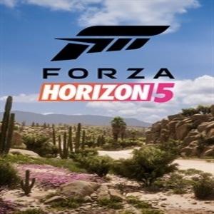 Acquistare Forza Horizon 5 CD Key Confrontare Prezzi