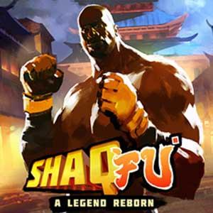 Acquistare Shaq Fu A Legend Reborn CD Key Confrontare Prezzi