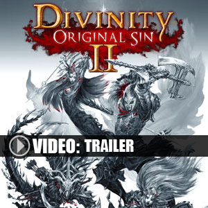 Acquista CD Key Divinity Original Sin 2 Confronta Prezzi