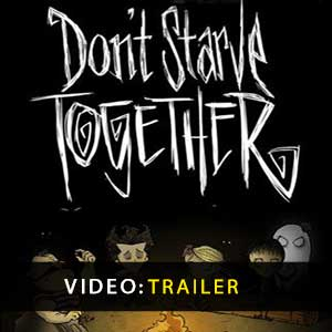 Acquista CD Key Dont Starve Together Confronta Prezzi