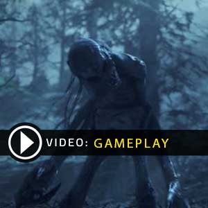 Fallout 76 Gameplay Video