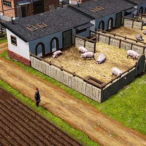 Farm Manager 2021 - Porcile