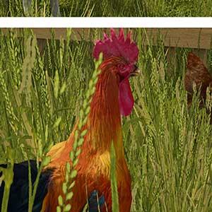 Farming Simulator 17 Animali da Fattoria