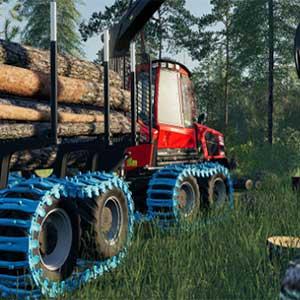 entusiasmanti nuove attività agricole