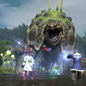 Final Fantasy 14 A Realm Reborn - Combattimento