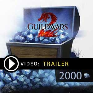 Acquista CD Key Guild Wars 2 Gems Confronta Prezzi
