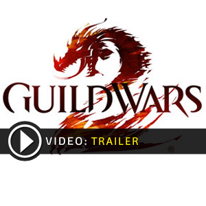 Acquista CD Key Guild Wars 2 Confronta Prezzi