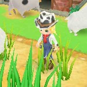 Harvest Moon 3D A New Beginning Nintendo 3DS Personaggi