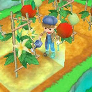 Harvest Moon 3D A New Beginning Nintendo 3DS Innafiando le piante