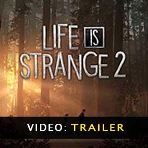 Acquistare Life is Strange 2 CD Key Confrontare Prezzi