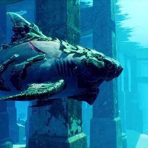 Esplorare relitti affondati