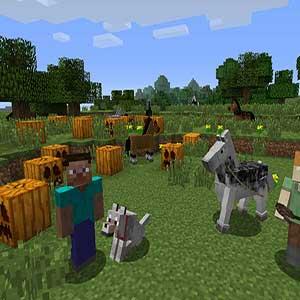 Minecraft Costruiamo