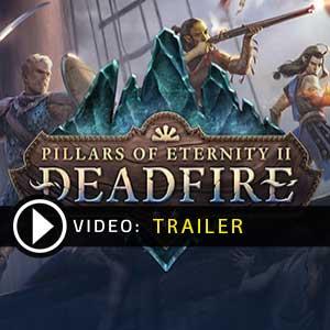 Acquistare CD Key Pillars of Eternity 2 Deadfire Confrontare Prezzi