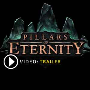 Acquista CD Key Pillars of Eternity Confronta Prezzi