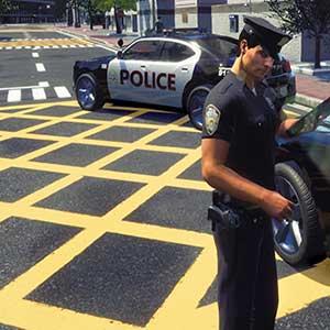 Ricercati sospetti e veicoli rubati