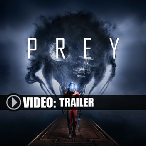 Acquista CD Key Prey 2017 Confronta Prezzi