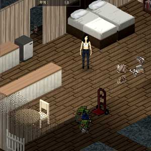 Project Zomboid Carattere
