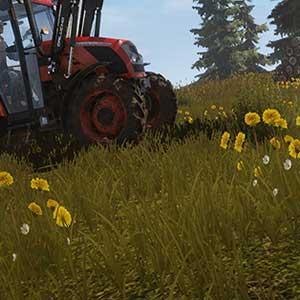 Agricoltura globale