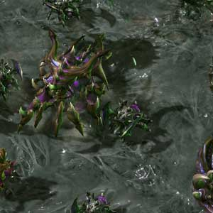 Starcraft 2 Heart of the Swarm Nemici