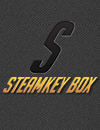 Giochi region free e region restricted su Steamkeybox.