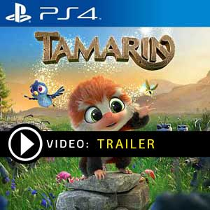 Tamarin PS4 Prices Digital or Box Edition