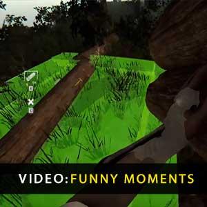 I momenti divertenti della foresta