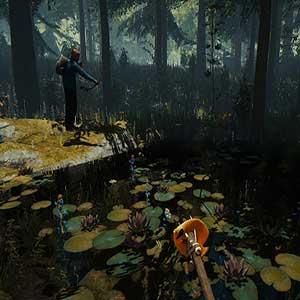 The Forest Caccia
