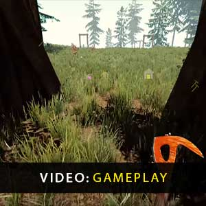 Il gioco multiplayer online della foresta
