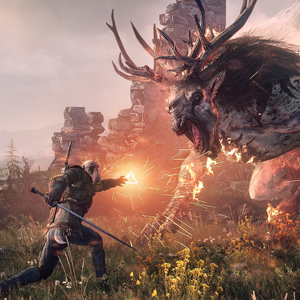 The Witcher 3 Wild Hunt Combattimento