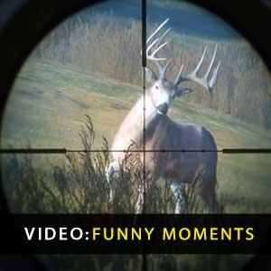 theHunter Call of the Wild Momenti divertenti