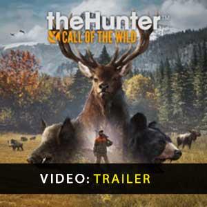 Acquista CD Key theHunter Call of the Wild Confronta Prezzi